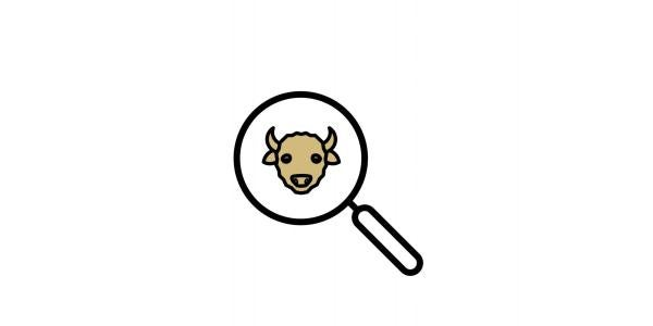 Magnifying glass with a buffalo