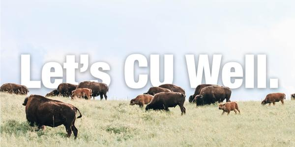Be Well image with buffalos
