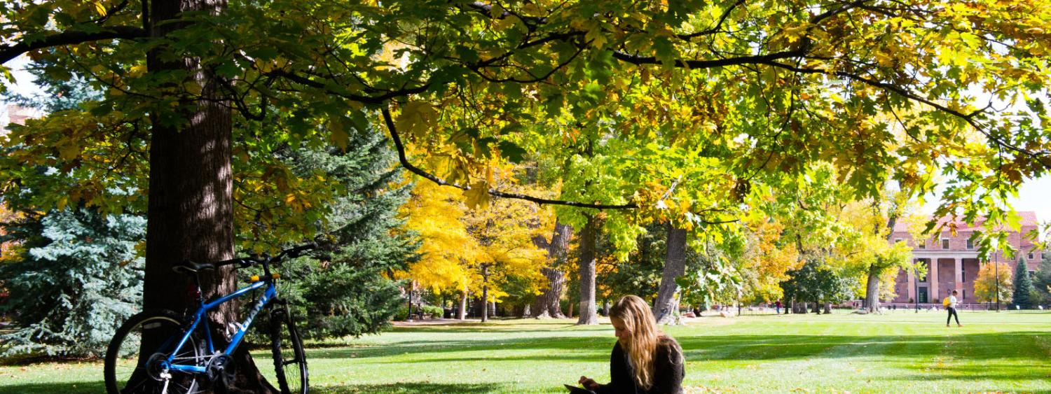 Student studying on campus during fall.