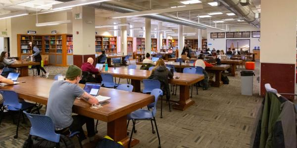 Students studying at Norlin Library