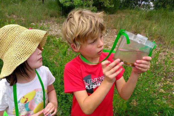 Two kids investigate an aquatic ecosystem in a container.