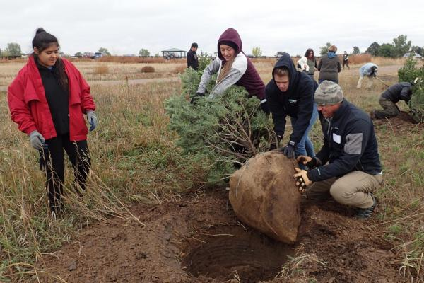 Students plant trees as part of restoration ecology project