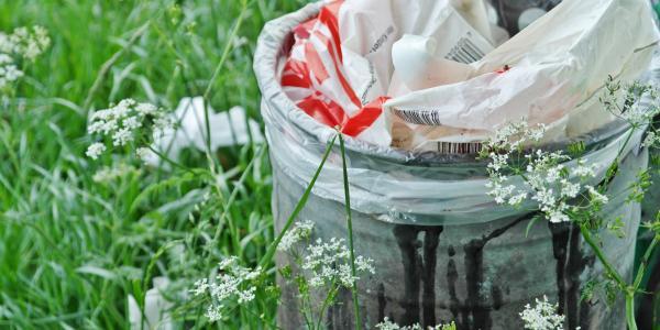 trash can beside green grass