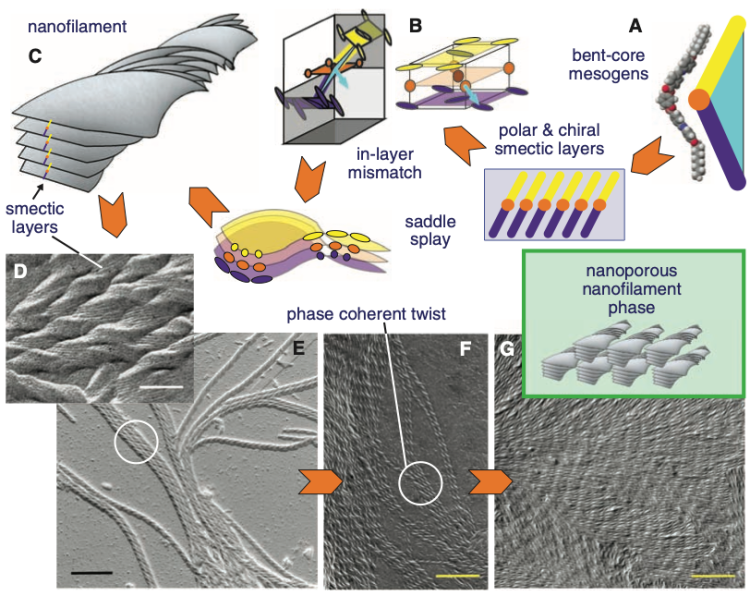 Main image from Hough et al. 2009 Science Helical Nanofilament Phases