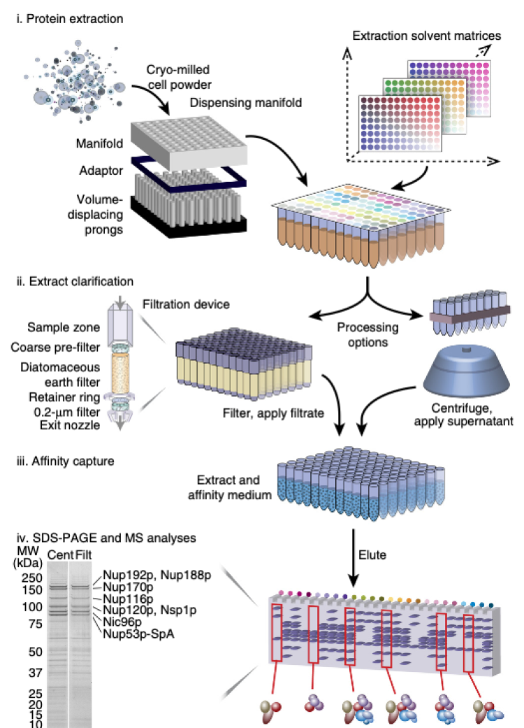 Main image from Hough et al. 2015 Nature Methods