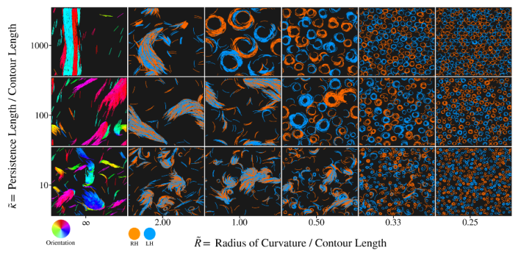 Main image from Moore et al. 2020