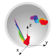 Cartoon of kinetichore diffusion and capture inside nuclear envelope