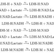 Reaction schematic