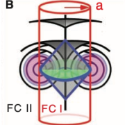 Thumbnail image from Hough et al. 2009 Science Chiral Isotropic Liquids from Achiral Molecules
