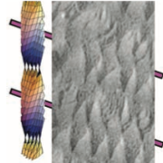 Thumbnail image from Hough et al. 2009 Science Helical Nanofilament Phases