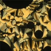 SMRC Liquid Crystal Image