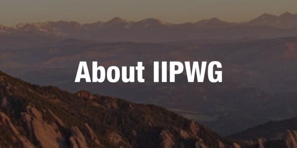 About IIPWG