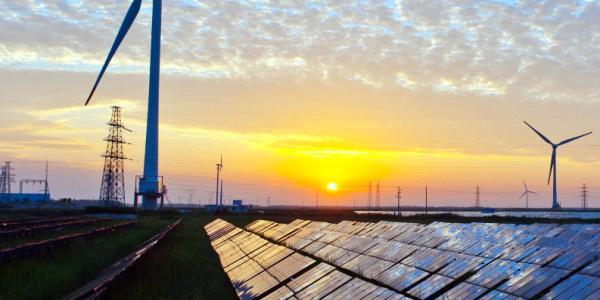 Renewable Energy Field