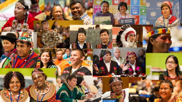 UN/Indigenous Peoples