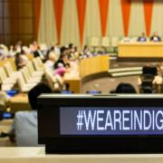 We Are Indigenous United Nations