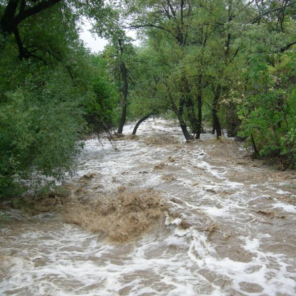 2013 flood: Boulder Creek near EFP