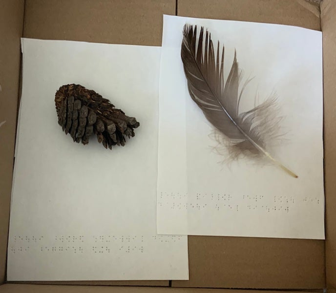 Pinecone and feather with braille text