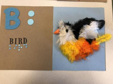 Book page for letter B with a bird made from feathers with a hard plastic beak.