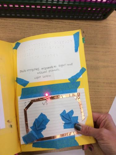 Page with copper tape circuit connecting a battery and LED lightbulb with explanation of photoreceptor in braille.