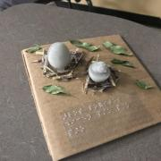 3D Model of a hatching chicken and an egg in a nest.
