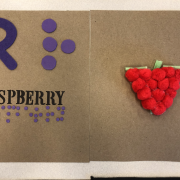 Tactile raspberry made from pom poms with word Raspberry in braille
