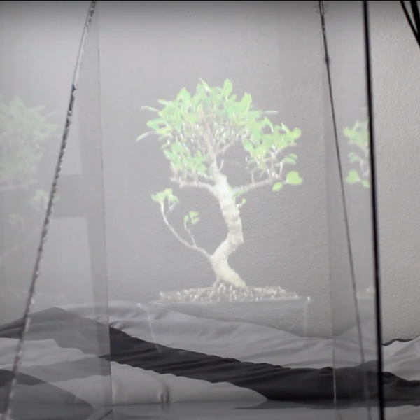 Hologram of a tree