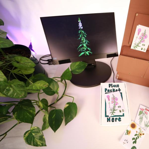 Art installation with computer monitor and plants on a table
