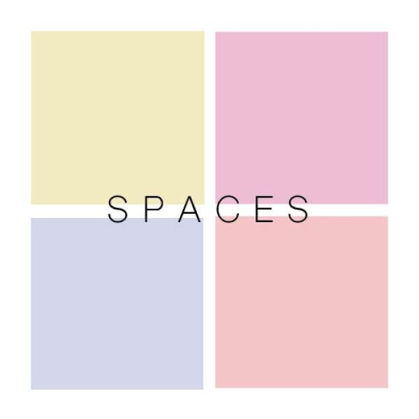 Poster for photography booked titled Spaces