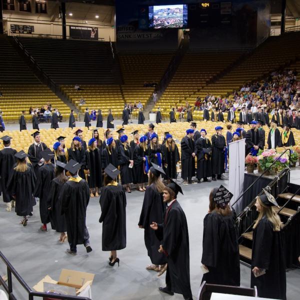 The graduates process