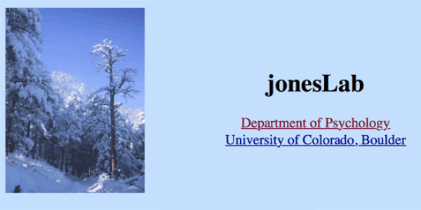 jones lab logo