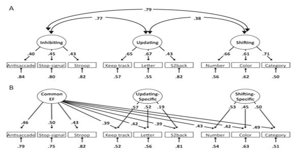 miyake lab data graphic