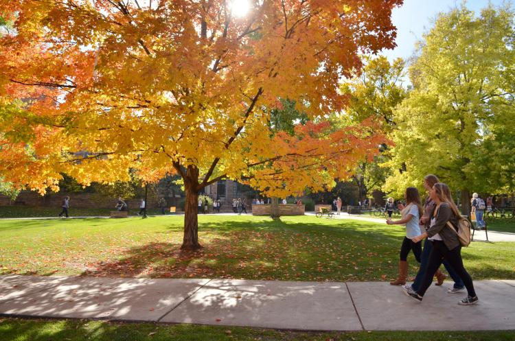 students on campus with fall foliage