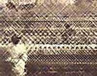 meiji restoration image blurred