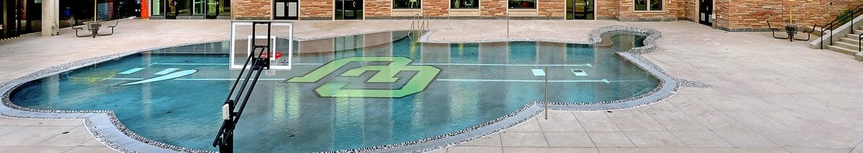 buffalo shaped pool