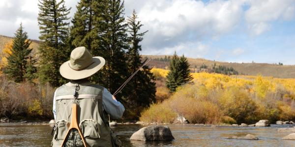 Man fly fishing in fall