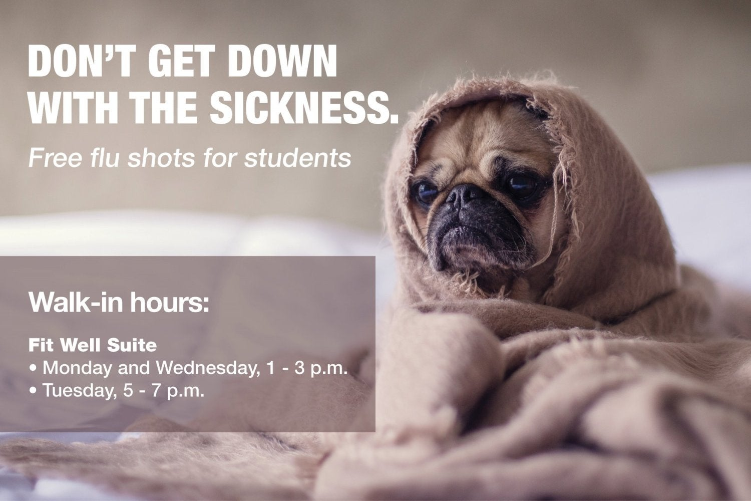 free flu shots at the fitwell suite.  click for more inf