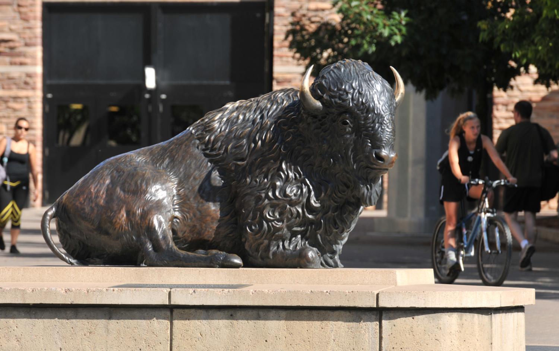 Buffalo statue on campus