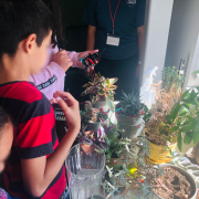Students using sensors to determine if a plant needs water.