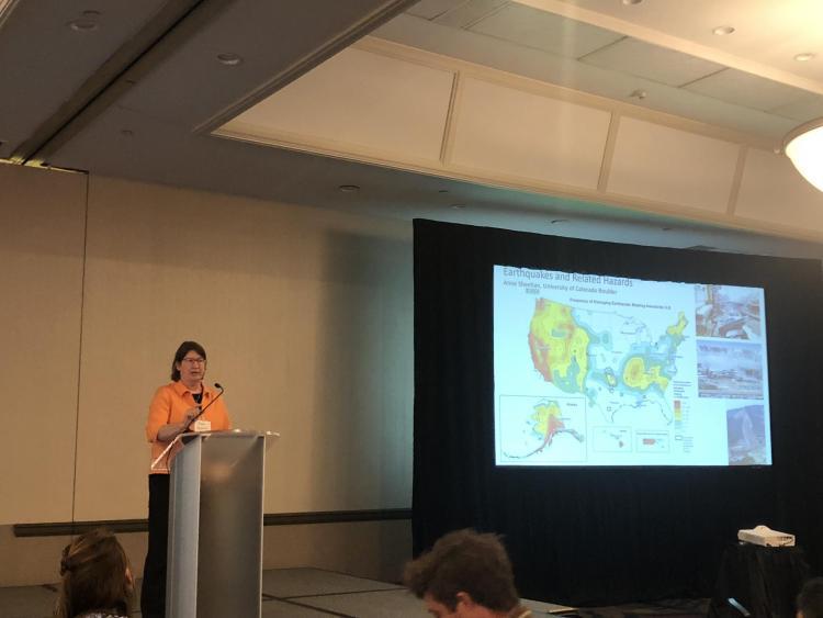Anne Sheehan - Presentation