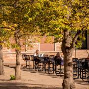 CU Boulder campus in the fall