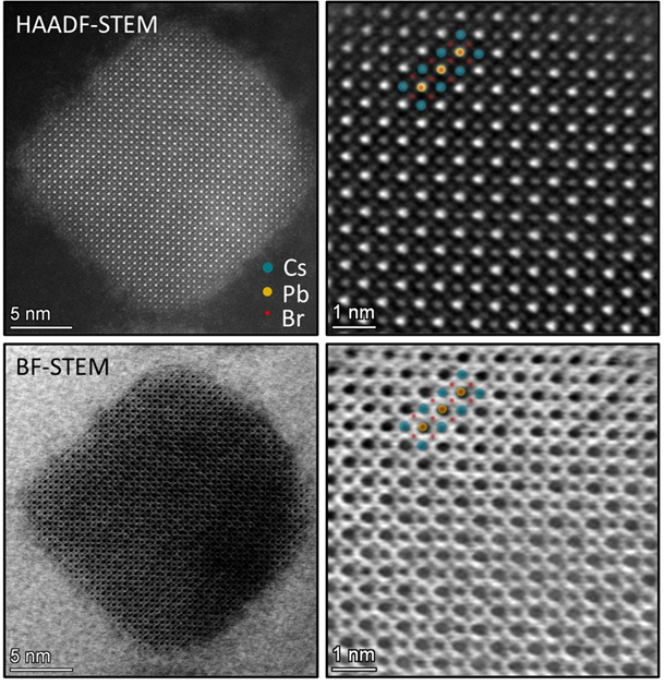 Atomic resolution images of a novel lead-halide perovskite nanocrystal as a photocatalyst