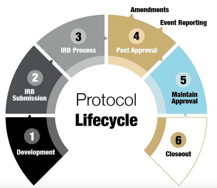 Protocol Lifecycle