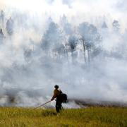 Denver Post: Funding basic science research critical for a scorched Colorado and a warming world