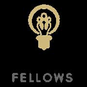 RIO Faculty Fellows