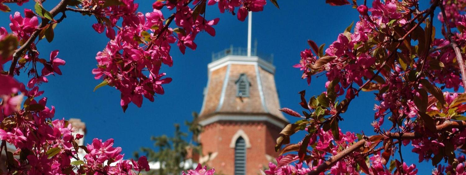 Spring flowers against Old Main