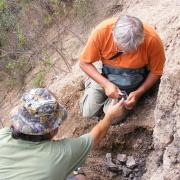 Sampling a buried soil in Nochixtlán / Tomando muestras de un suelo enterrado en Nochixtlán
