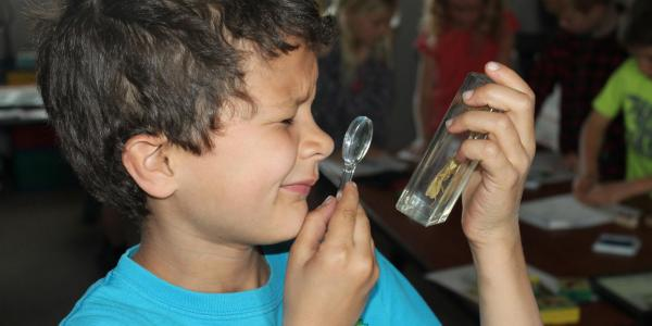 boy looking at specimen using magnifying glass