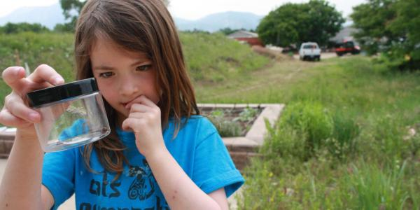 girl holding up bug specimen