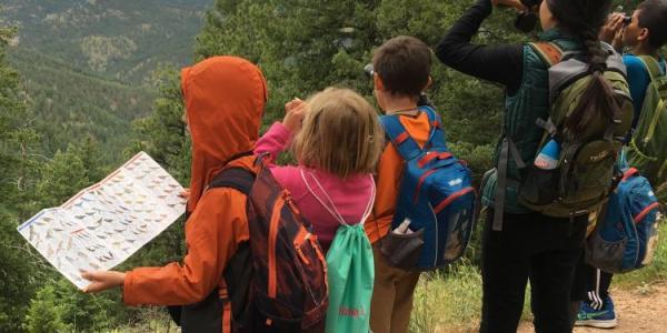 kids looking at birds through binoculars
