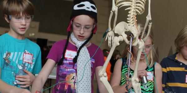students playing with a skeleton model attached to muscle wire